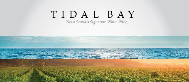 tidalbay-small